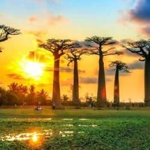 Notre service tourisme vous fera découvrir Madagascar, destinations aussi passionnante et incomparable